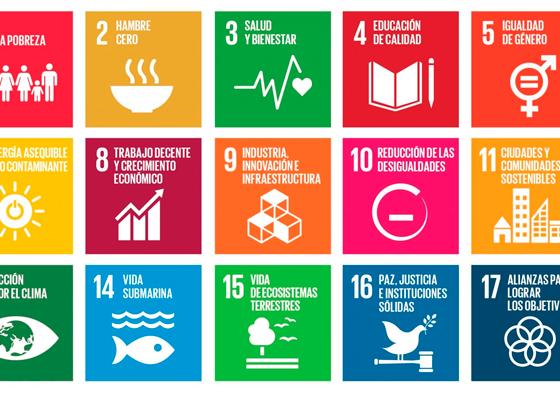 Recomendaciones para una Agenda 2030 por la salud y los derechos sexuales y reproductivos